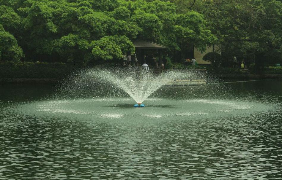 景观水004