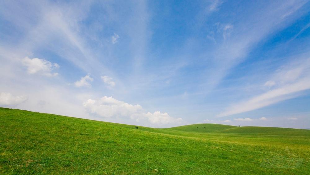 云上風之谷11