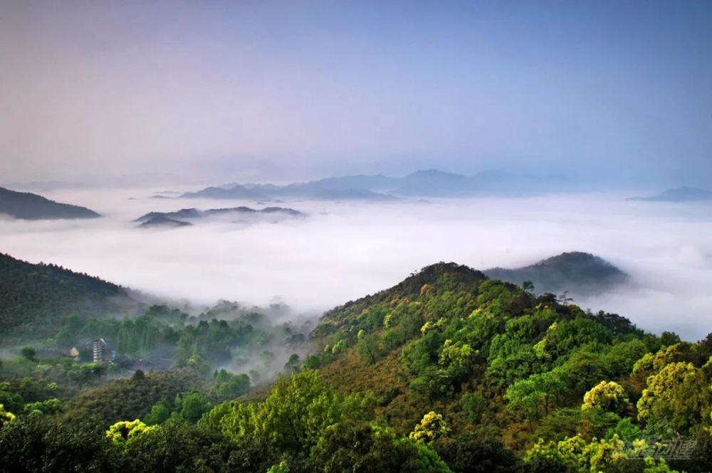 安吉龍王山19