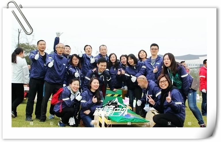 F1团队赛车12