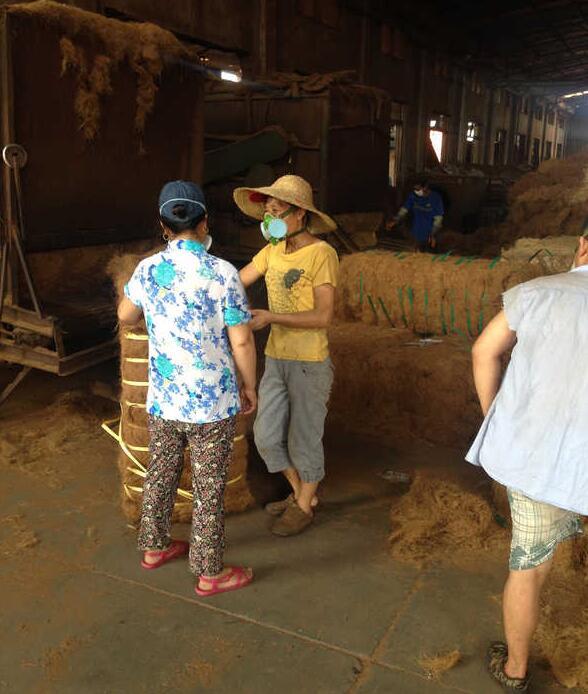 厂家生产棕垫时的情景