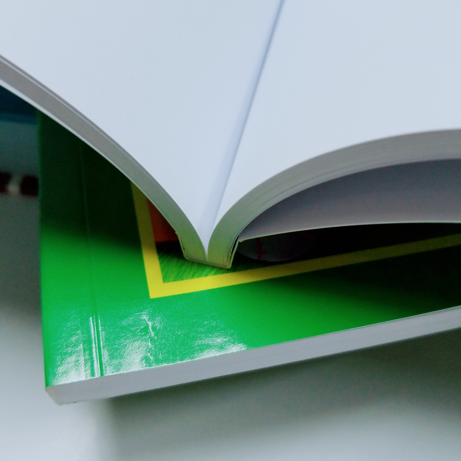 The standard choice for most softcover books. This flexible, glued binding will stand the test of time.