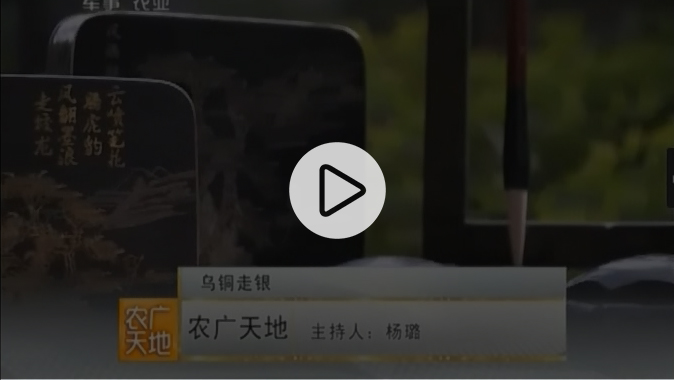 20150321CCTV-7《農廣天地》烏銅走銀