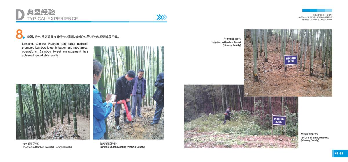 法国开发署贷款湖南森林可持续经营项目画册35
