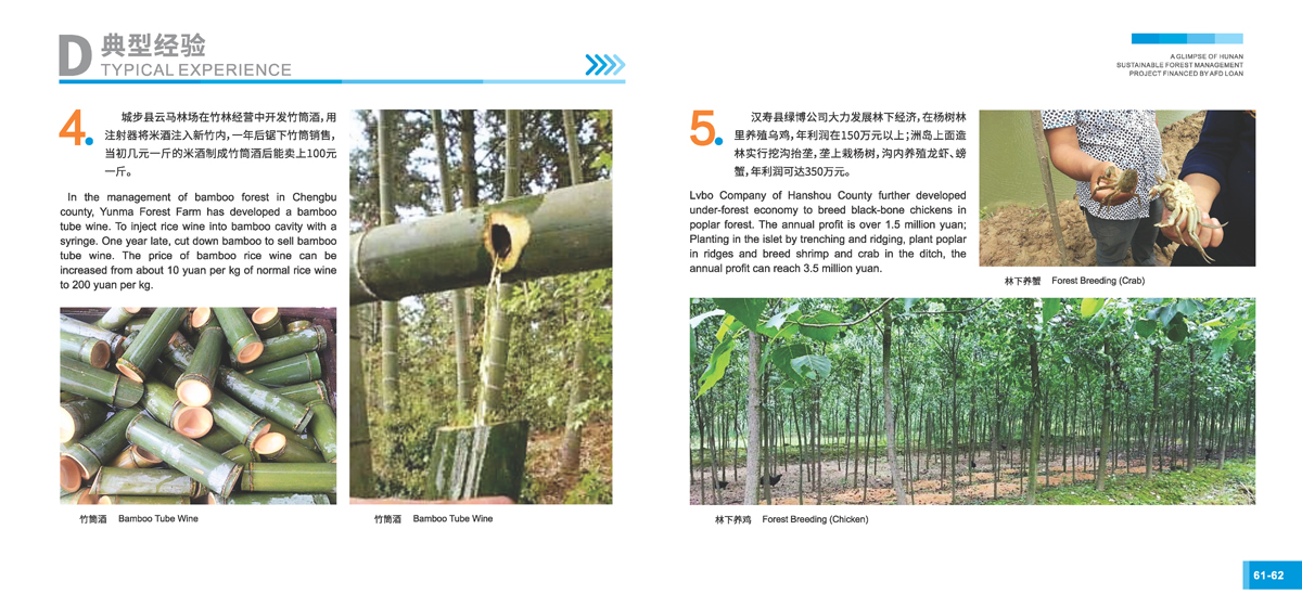 法国开发署贷款湖南森林可持续经营项目画册33