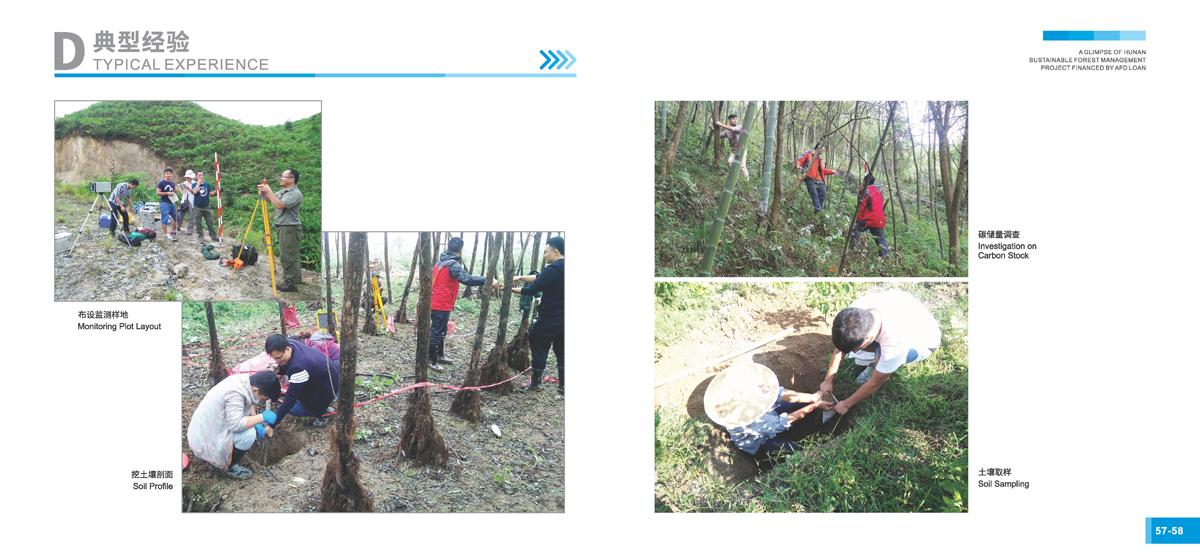 法国开发署贷款湖南森林可持续经营项目画册31