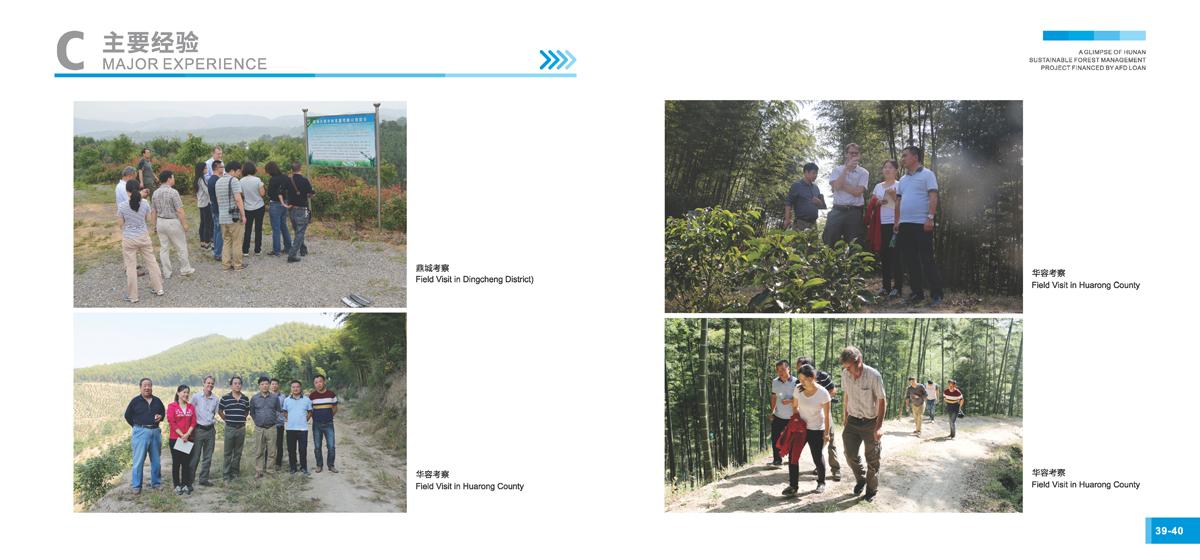 法国开发署贷款湖南森林可持续经营项目画册22