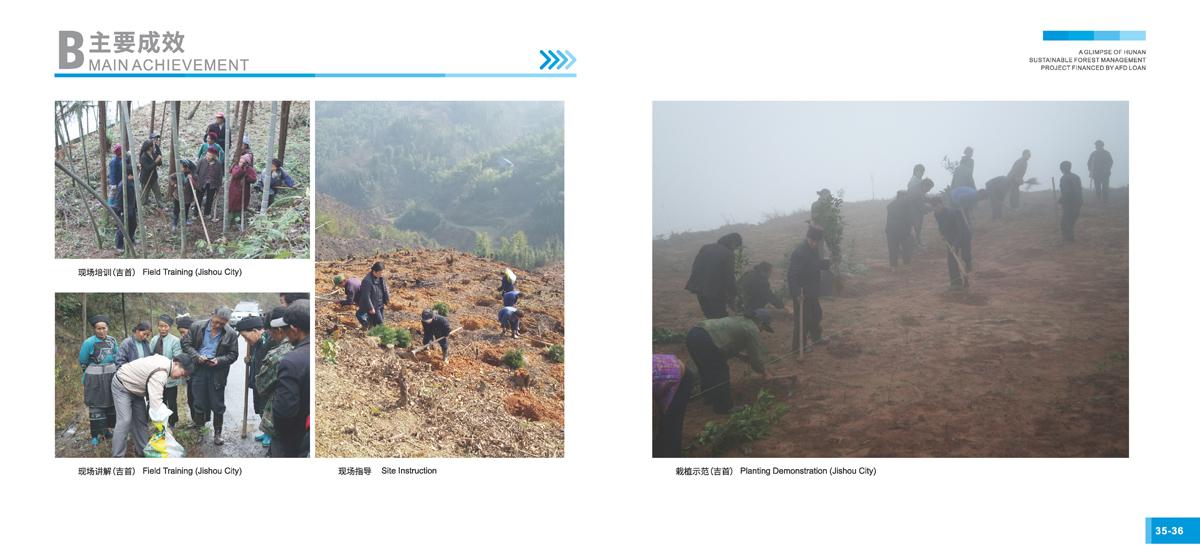 法国开发署贷款湖南森林可持续经营项目画册20