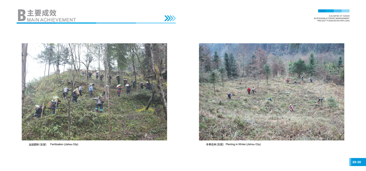 法国开发署贷款湖南森林可持续经营项目画册17