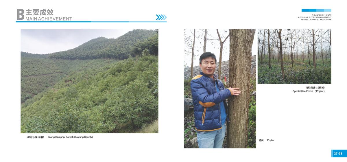 法国开发署贷款湖南森林可持续经营项目画册16