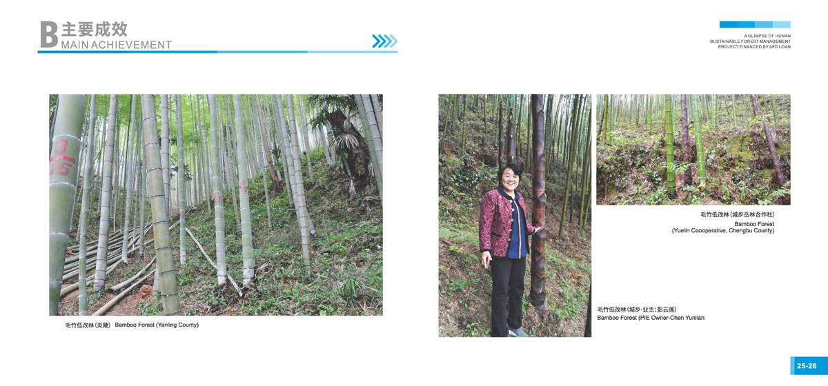 法国开发署贷款湖南森林可持续经营项目画册15