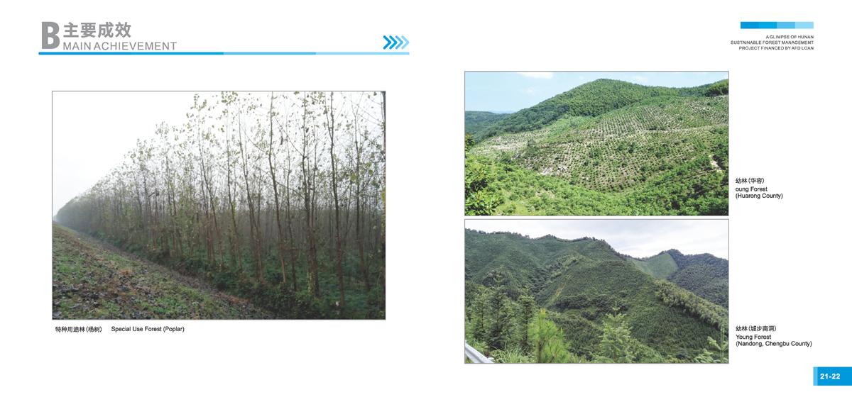 法国开发署贷款湖南森林可持续经营项目画册13