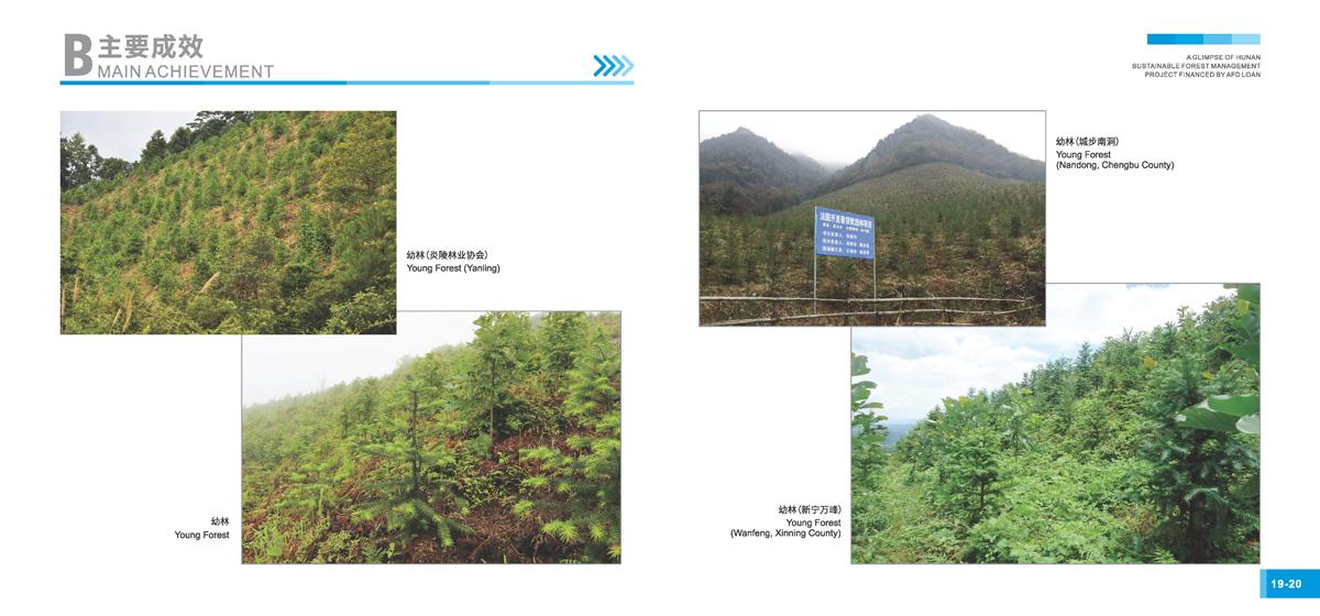法国开发署贷款湖南森林可持续经营项目画册12