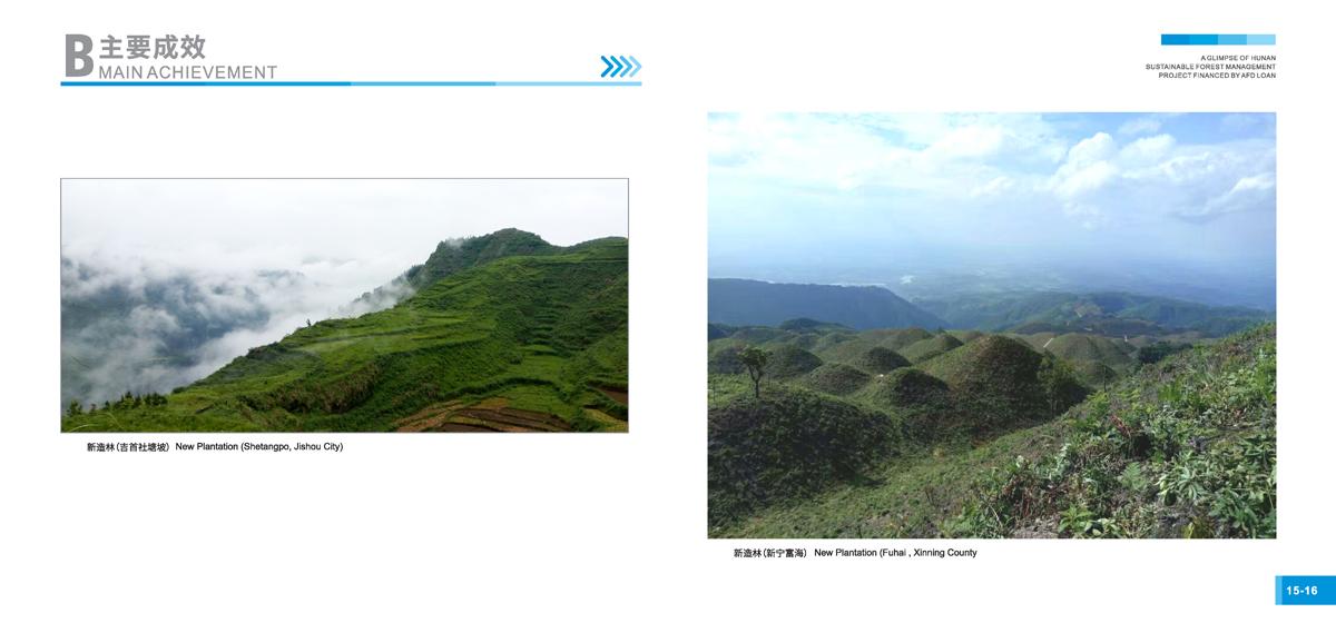 法国开发署贷款湖南森林可持续经营项目画册10