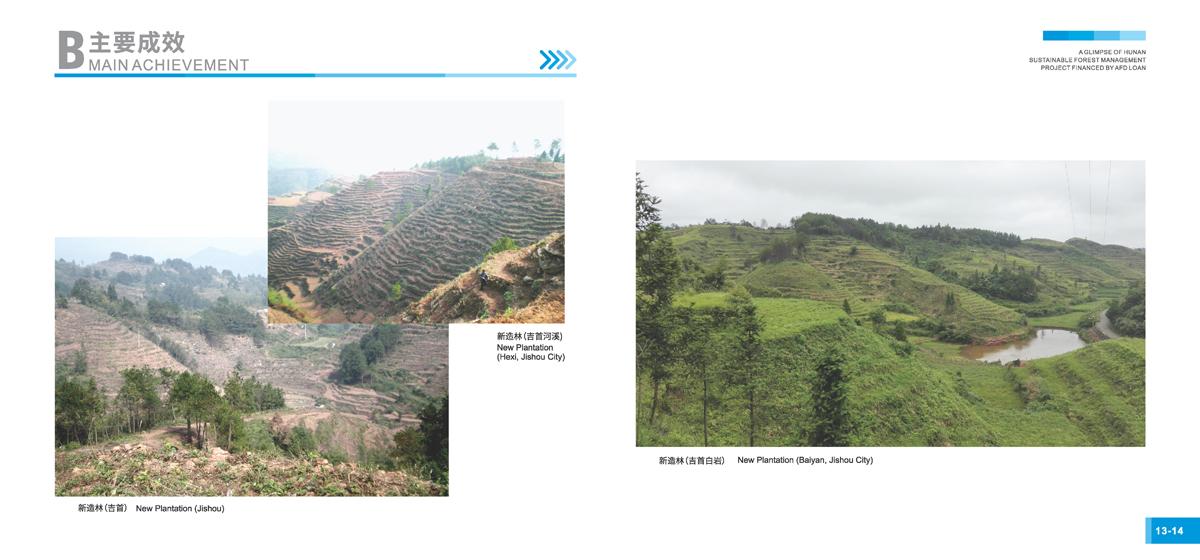 法国开发署贷款湖南森林可持续经营项目画册9
