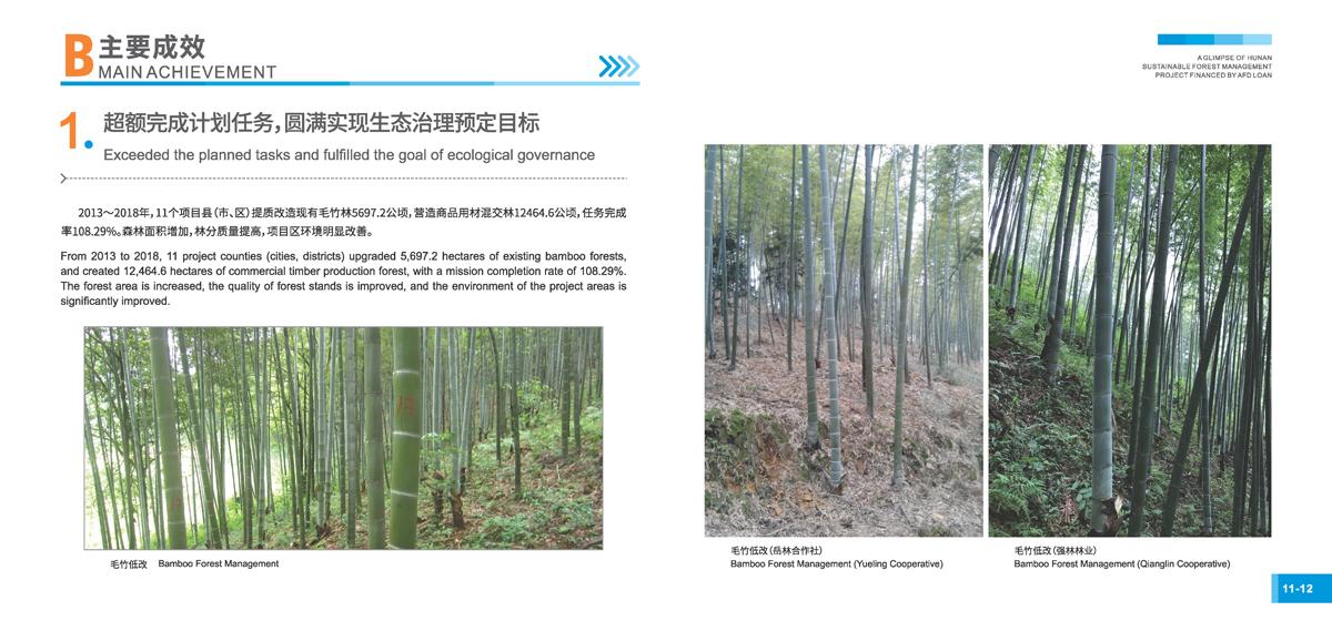 法国开发署贷款湖南森林可持续经营项目画册8