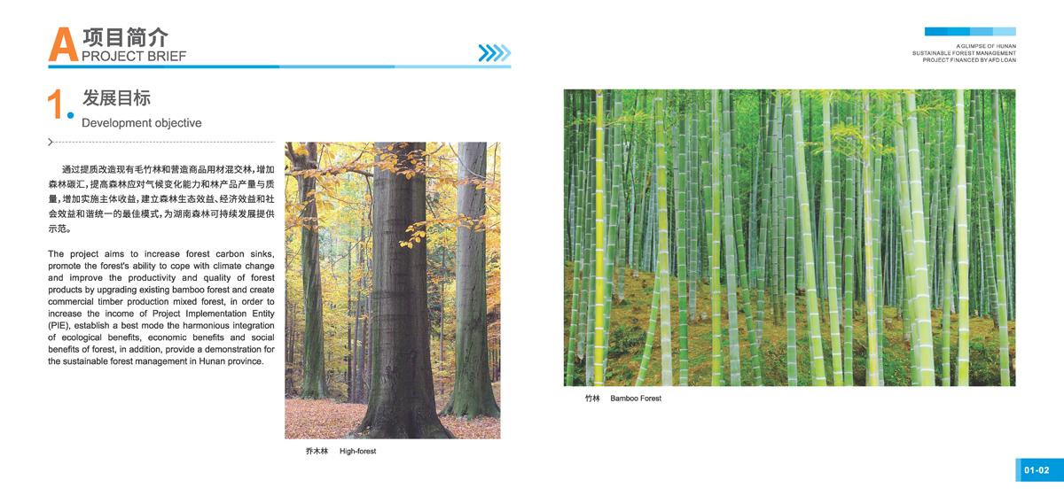 法国开发署贷款湖南森林可持续经营项目画册3