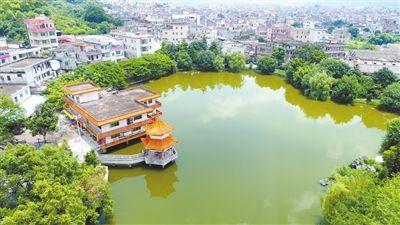 新兴县-天堂镇