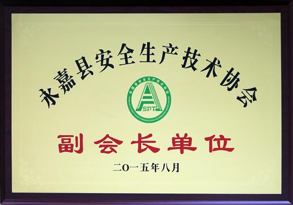 永嘉县安全生产技术协会副会长单位