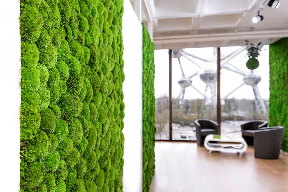 BallMoss_ShowRoom_GreenMood-1200x801