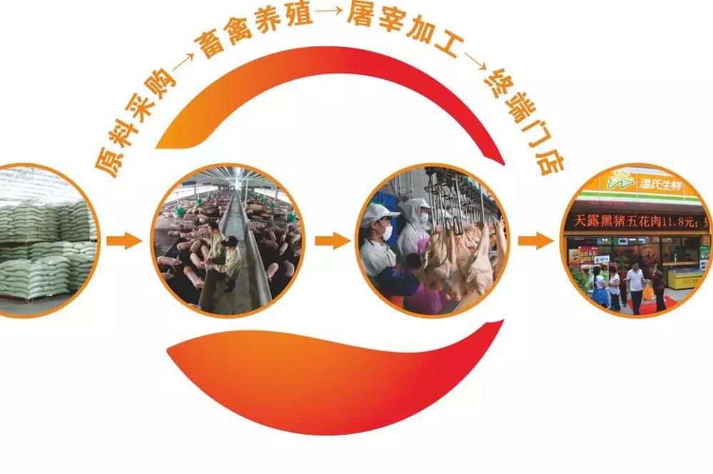 2019广州餐饮加盟展-温氏股份生产流程