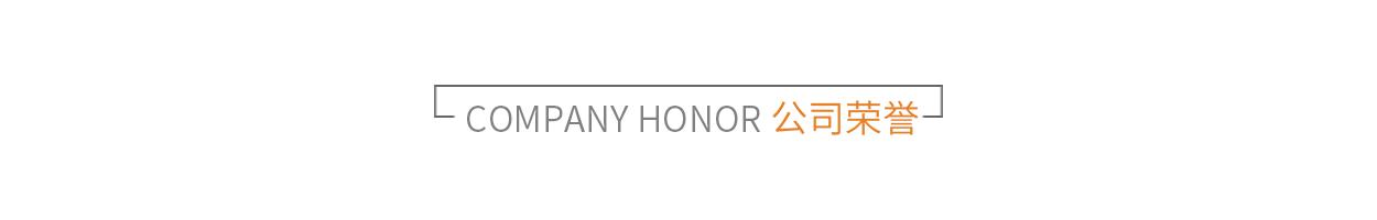 标题-公司荣誉