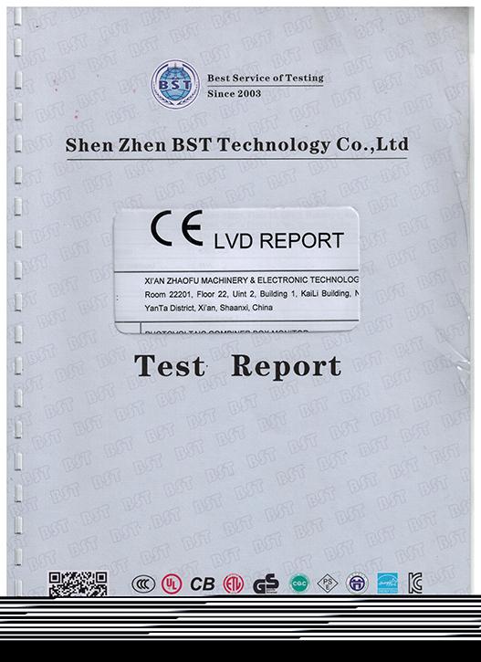 CELVD報告1