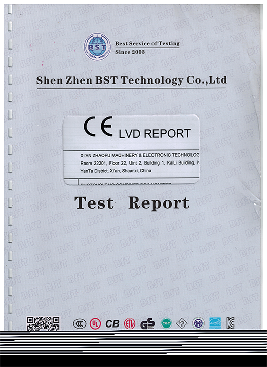 CELVD报告1