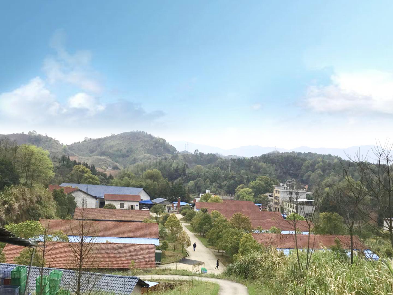 福溪生产厂区外景