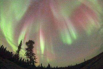 加拿大极光2