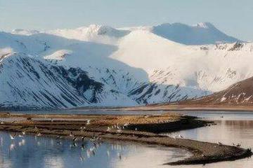 2月21日冰岛极光5