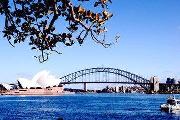 10月17日澳大利亚2