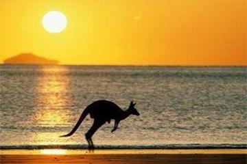 10月17日澳大利亚11