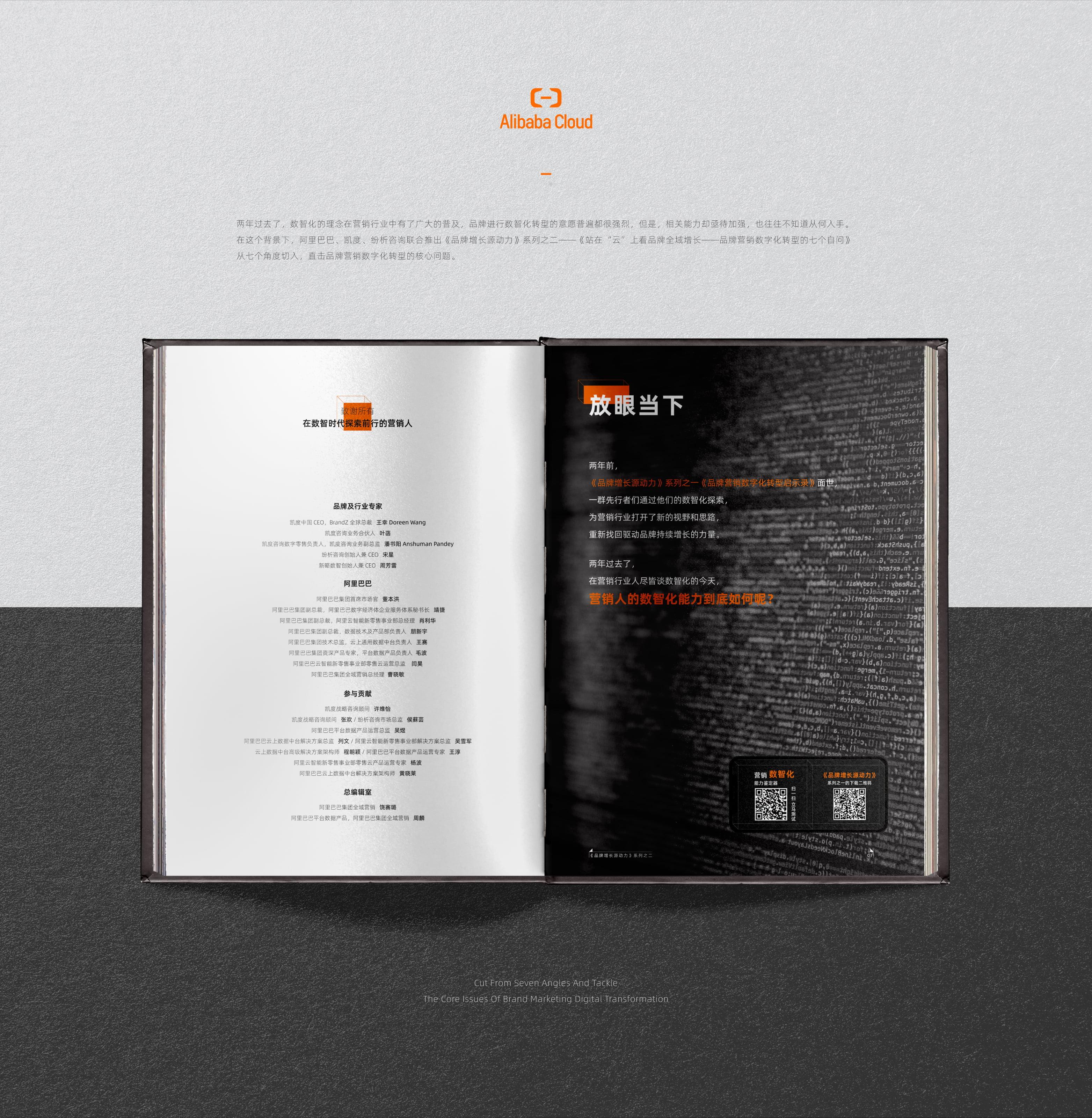 阿里云全域營銷書籍設計