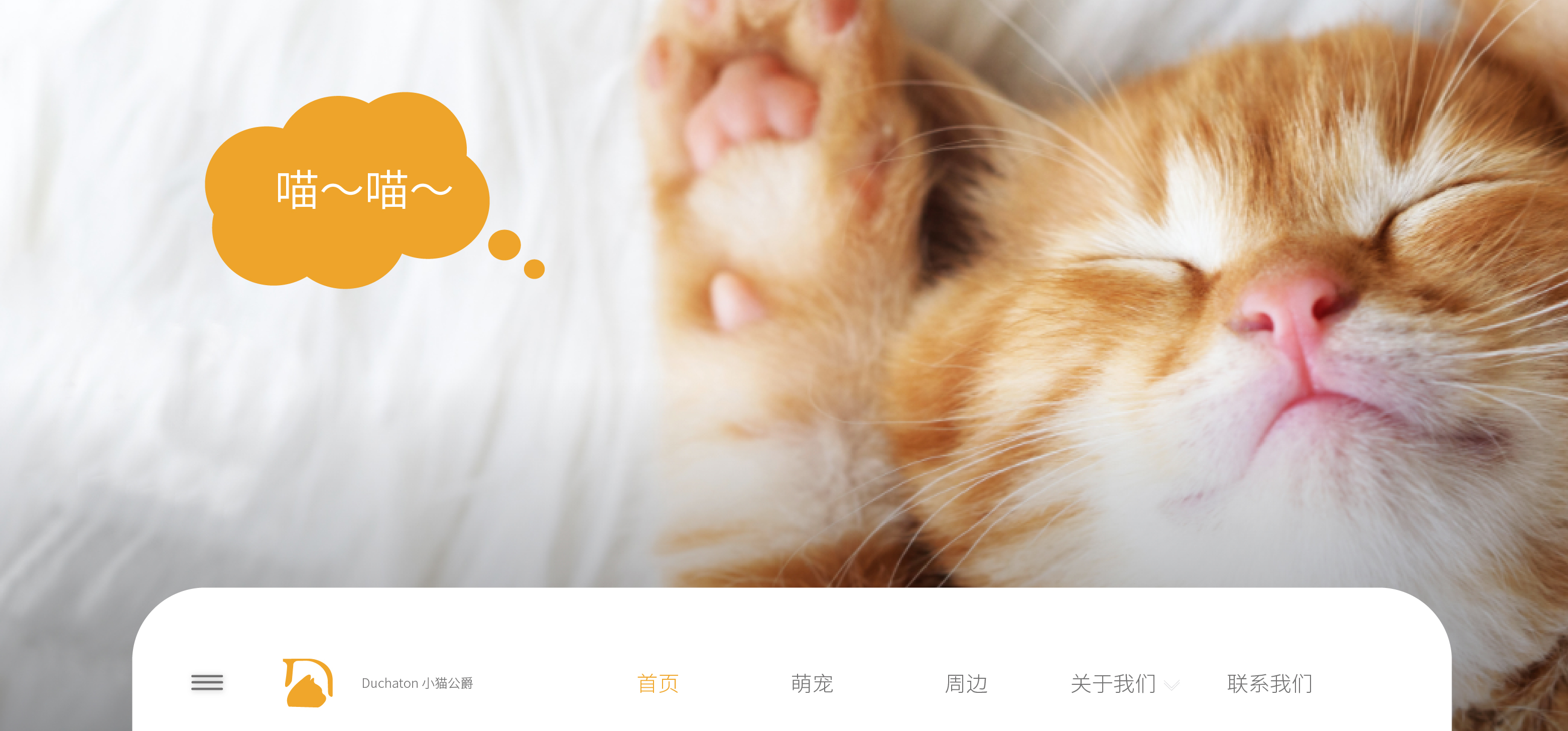 貓公爵貓舍官網設計