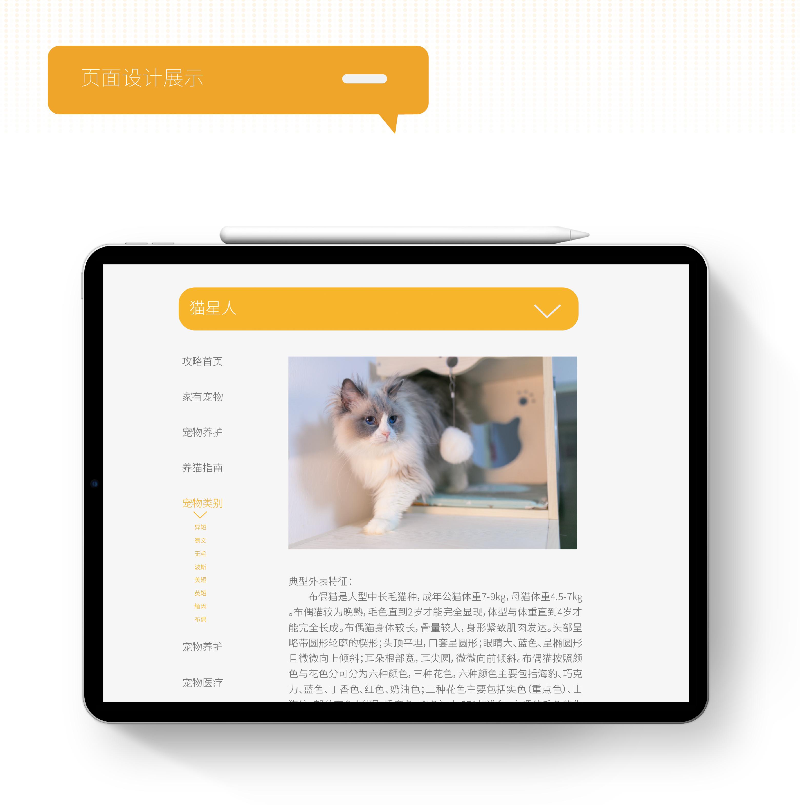 貓公爵網站頁面設計