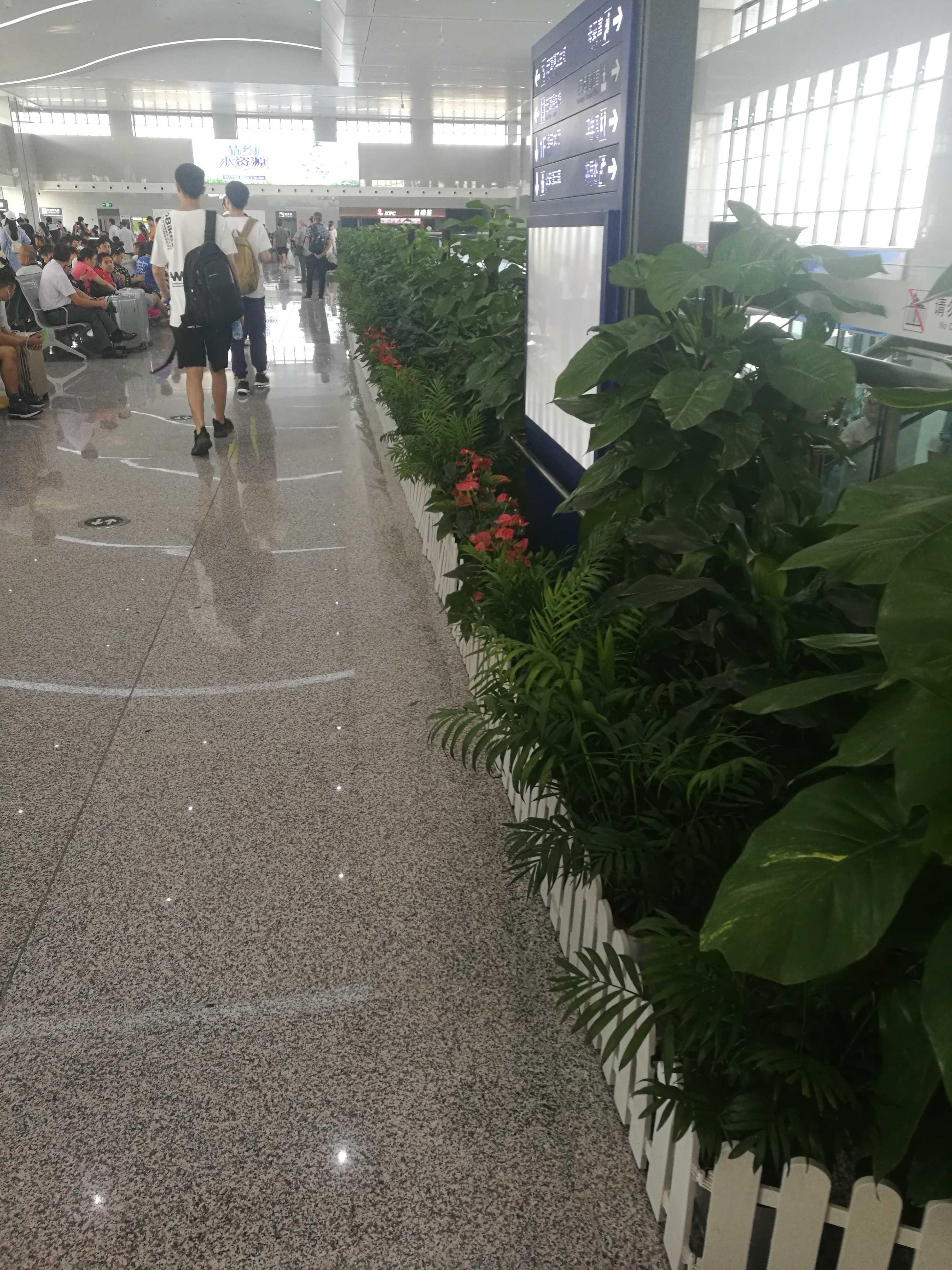 六安火車站綠植裝飾效果