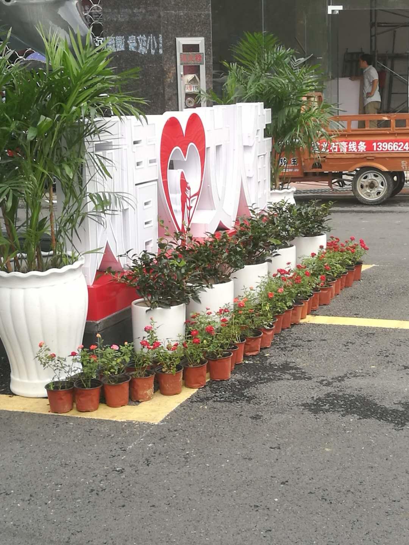 步行街花卉裝飾效果