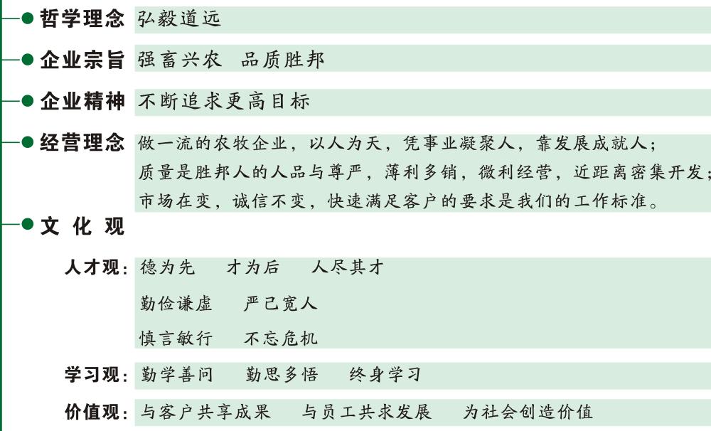 qiyewenhua