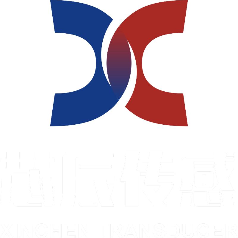 芯辰logo白