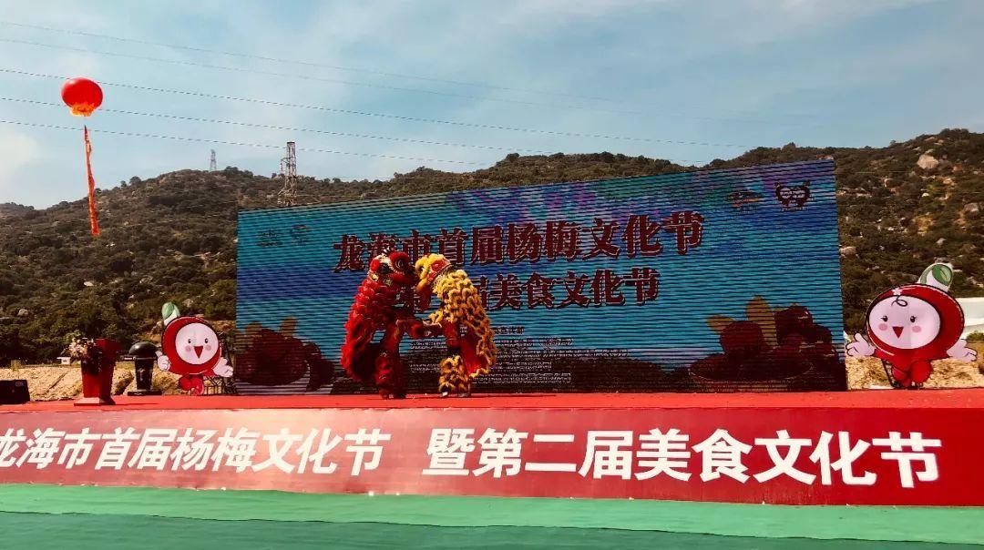 龙海市首届杨梅文化节1