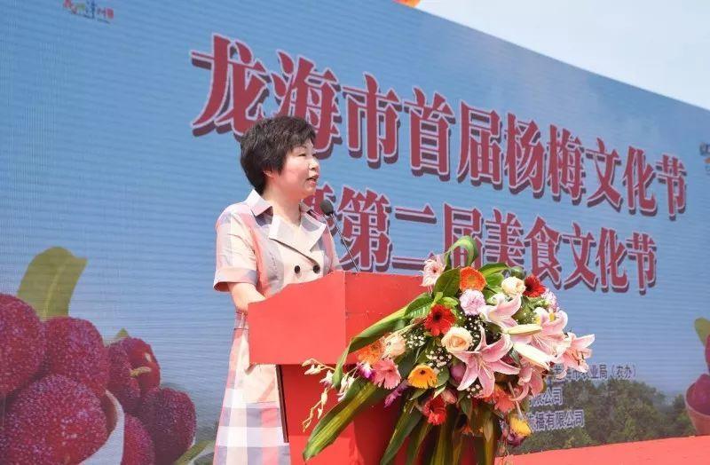 龙海市首届杨梅文化节5