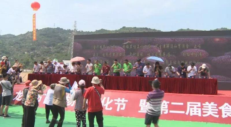 龙海市首届杨梅文化节13