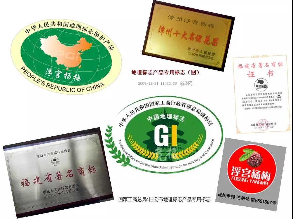 5.浮宫杨梅地理标志
