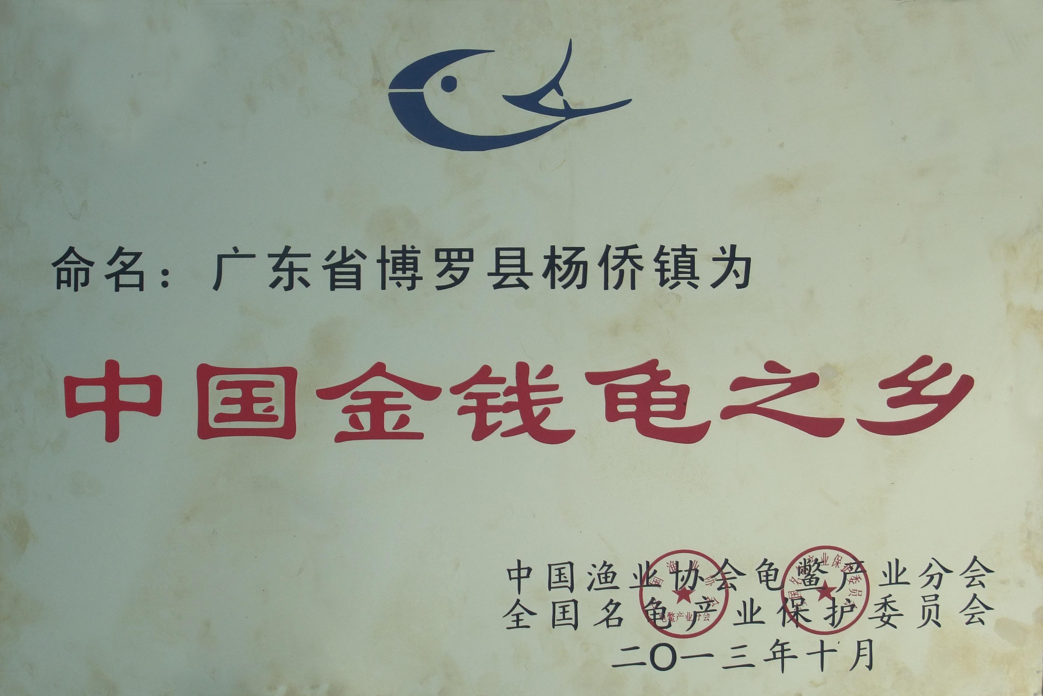 中國金錢龜之鄉