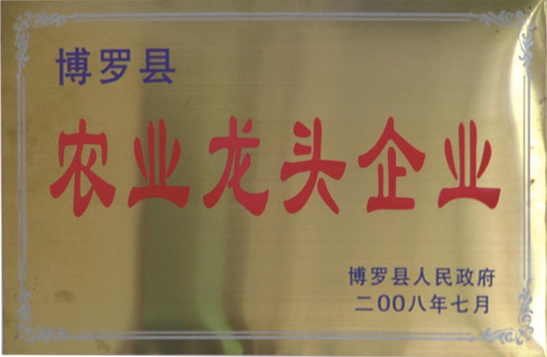 2008博羅縣龍頭企業