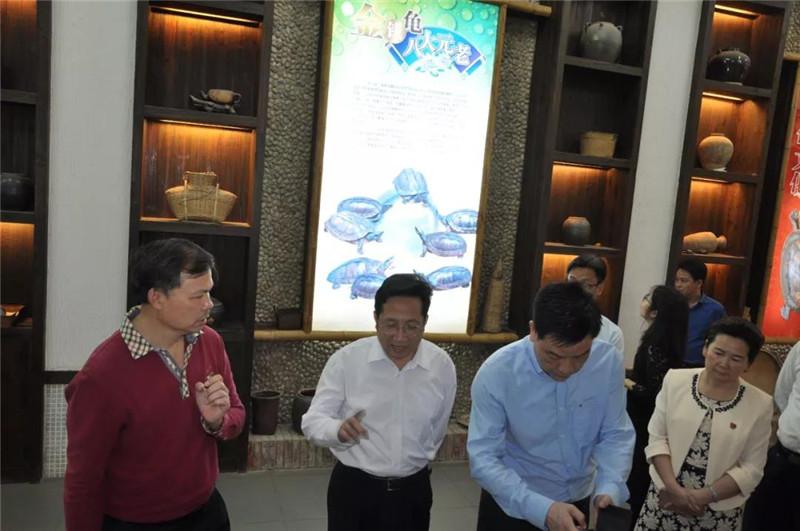 劉小軍常委一行參觀李藝金錢龜博覽園