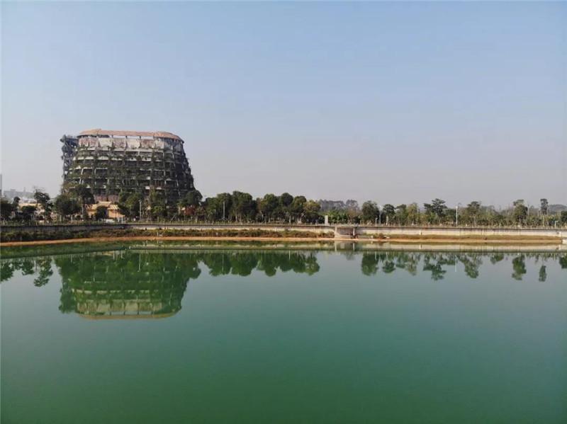 湖水清澈入境
