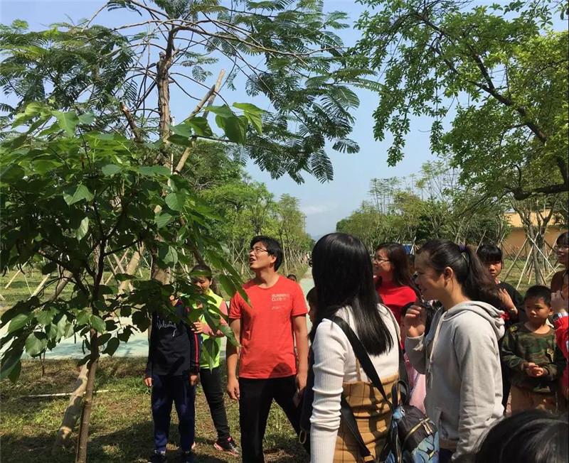 親子游團隊參觀生態桑果種植基地