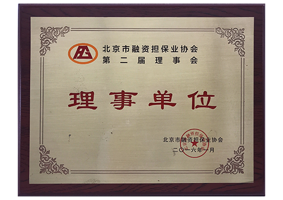 北京市融资担保业协会-理事单位